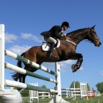 Show Jumping Equestrian Photograph