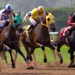 Horse Racing Photography
